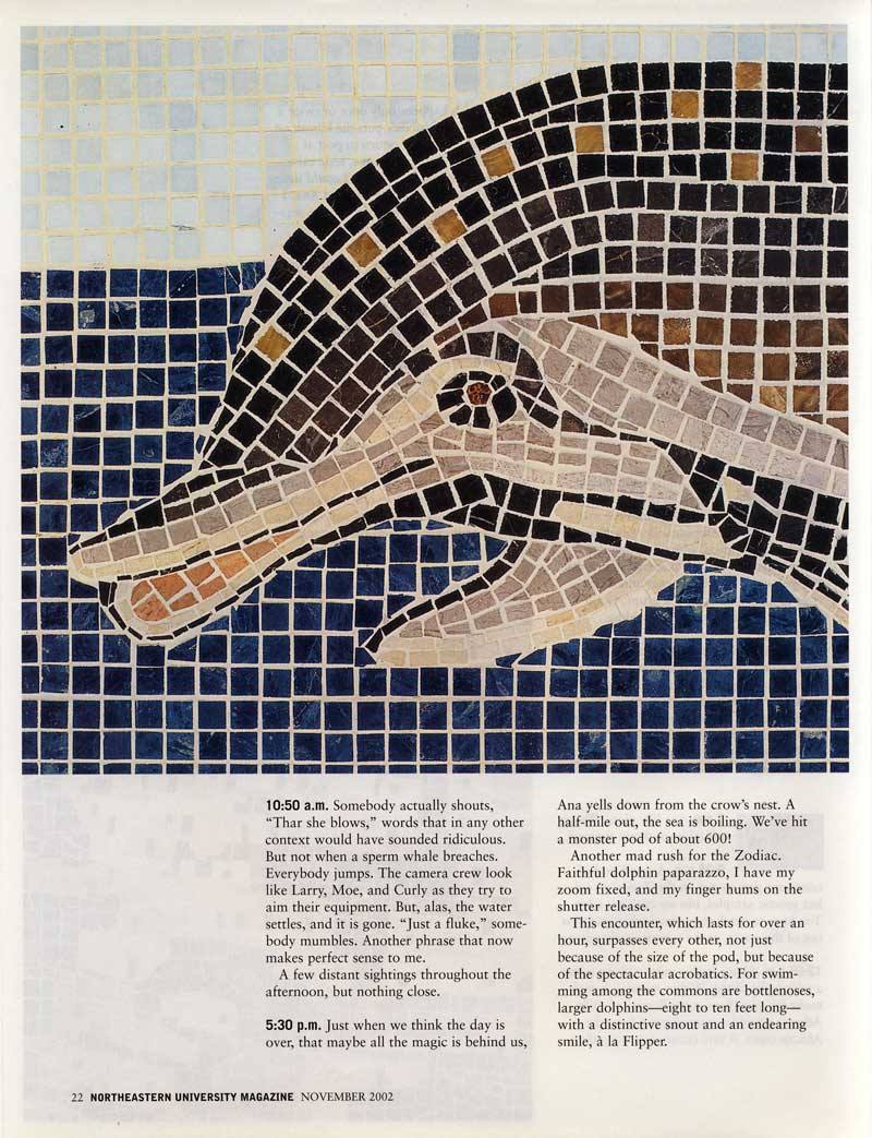 """The Days of the Dolphins,"" 4 marble mosaics, Northeastern University Magazine, Vol.  28, No."