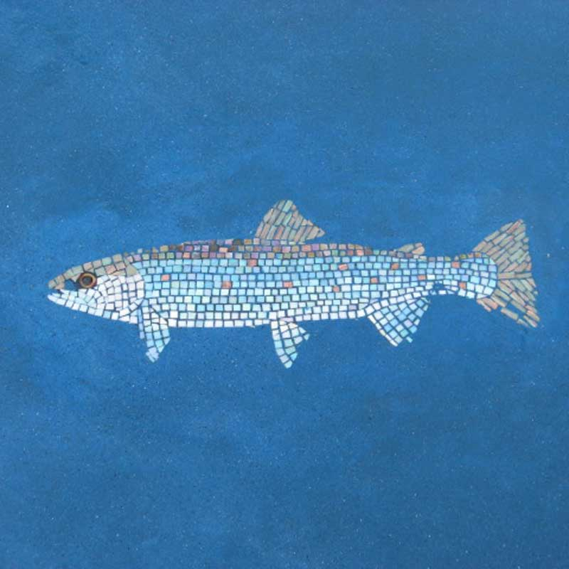 Glass Mosaic Fish for Limelight Lodge Commission