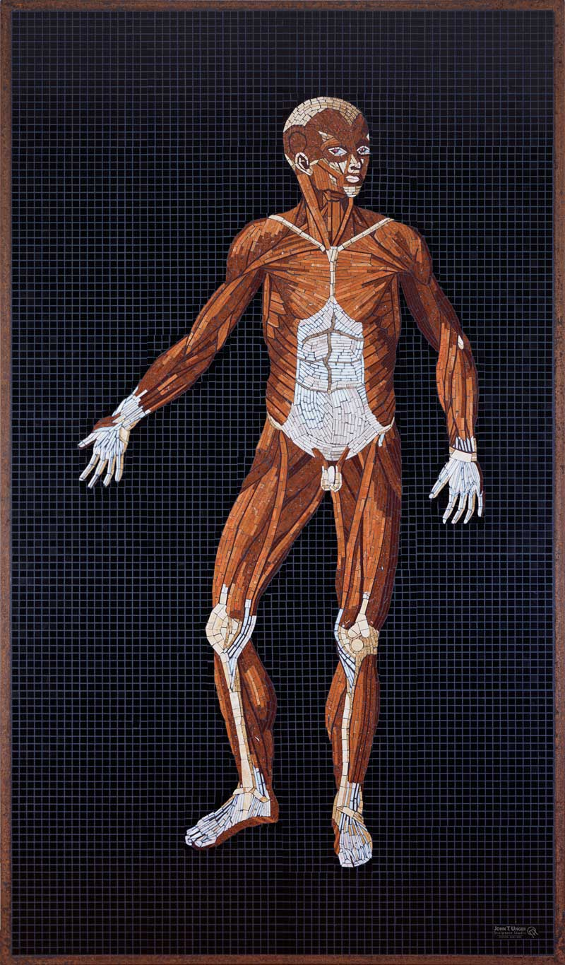 Marble Mosaic of Table 28 of Eustachi's Tabulae anatomicae, finished, in frame.