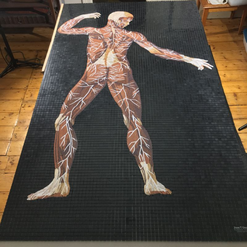Marble Mosaic of Table 23 of Eustachi's Tabulae anatomicae, finished and ready to install.