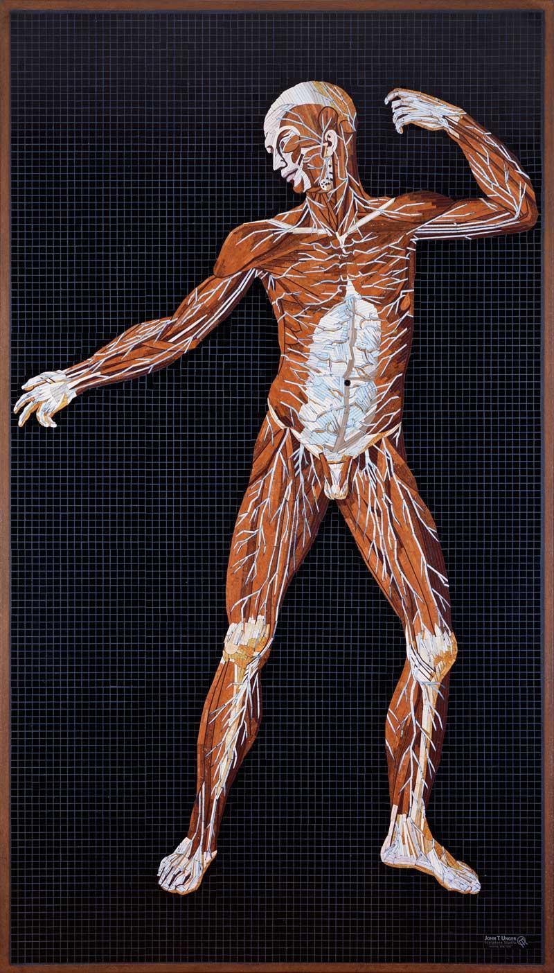 Marble Mosaic of Table 21 of Eustachi's Tabulae anatomicae, finished, in frame.