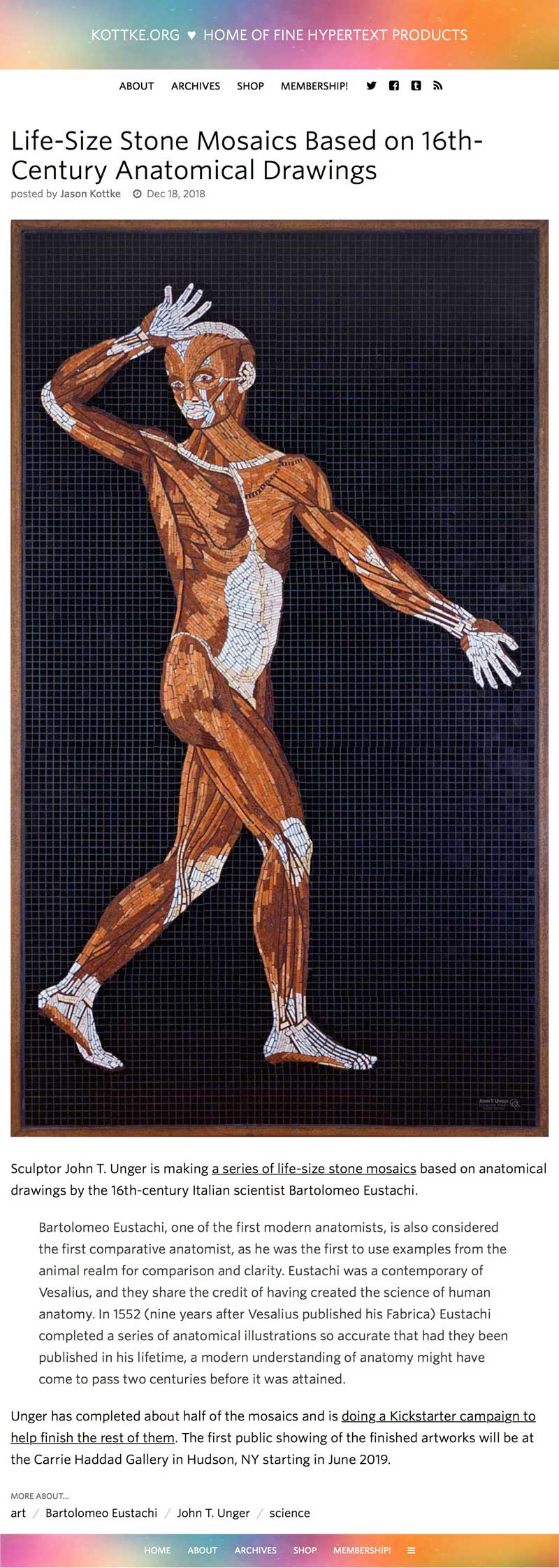 "2018 Kottke, Jason. ""Life-Size Stone Mosaics Based on 16th-Century Anatomical Drawings."" Kottke.org, 18 Dec. 2018, kottke.org/18/12/life-size-stone-mosaics-based-on-16th-century-anatomical-drawings."