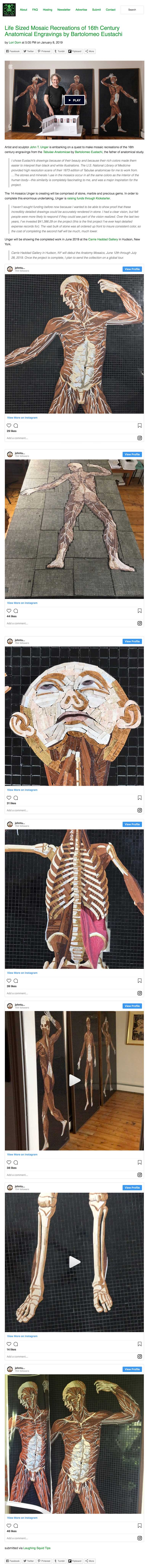 """Life Sized Mosaic Recreations of 16th Century Anatomical Engravings by Bartolomeo Eustachi."" Laughing Squid, 8 Jan. 2019"