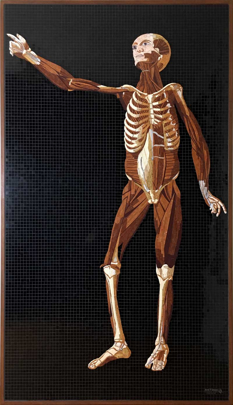 Marble Mosaic of Table 33 of Eustachi's Tabulae anatomicae, 2019
